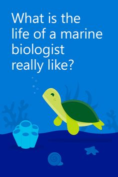 How to Become a Marine Biologist --http://www.academicinvest.com ...