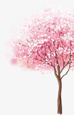 Cherry tree clipart ideas for 2019 Cherry Blossom Wallpaper, Cherry Blossom Painting, Flower Phone Wallpaper, Cute Wallpaper Backgrounds, Pink Wallpaper, Cellphone Wallpaper, Cute Wallpapers, Watercolor Trees, Floral Watercolor