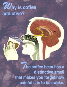 Why is coffee addictive? The coffee bean has a distinctive smell that makes you forget how painful it is to be awake.