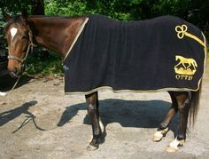 OTTB Cooler - this WILL be on my Christmas list