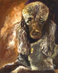 Chocolate Poodle Painting  - Chocolate Poodle Fine Art Print