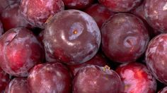 """Buy this now: Plums, with 12 recipes"" -- Click through for guidance on plum varieties and purchasing; click http://recipes.latimes.com/lists/recipes-plums2/ for the dozen plum recipes."