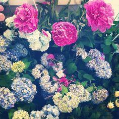 花屋の後藤さんと久しぶりに会う。  おーだからさん、久しぶりだね〜って言いながら、勝手に花を見繕ってくれてる。  不思議な後藤さん。  でも、何故だか、ちゃんと話が通じてるなって感じる。  昔々から知ってる人みたい。  だからか、至近距離で座って話しても平気。  滅多にないけど、たまにそういう人に出会う事がある。  だからって大した話するわけでも、しょっちゅう買いに行けるわけでもないんだけど。 - @kurakura_shokudou- #webstagram