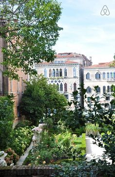 Secret garden with Grand Canal view - flat to rent in Venice, Italy