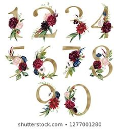 Floral Number Set - digits 0 with flowers bouquet composition, delicate gold geometric shape crystal. Unique collection for wedding invites decoration & other concept ideas. Floral Illustration, Plant Illustration, Wedding Stationary, Wedding Invitations, Caligraphy Alphabet, Wedding Invitation Background, Alphabet Wallpaper, Frame Background, Bullet Journal Art