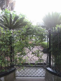 gate and fence - Charleston, SC