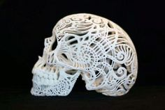 Lacey skull