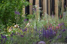 Chelsea Flower Show - 2014 | Show Gardens - Wilson McWilliam Studio – Andrew Wilson & Gavin McWilliam
