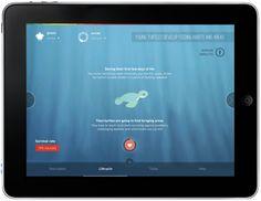 Sea Turtles Need Your Help - WWF by Jeremy Barre, via Behance