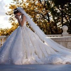 Fancy ballgown dress with tiara and veil.                              …