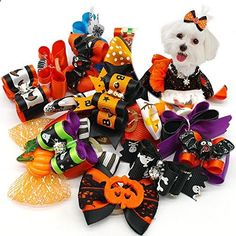 Cats Toys Ideas - High Maintenance Dog Didog 20 pcs Halloween Dog Cat Hair Bow with Ghosts and Pumpkin - Ideal toys for small cats