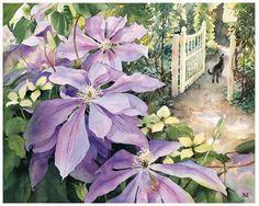 Clematis by Nancy Tichbourne