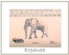 The Expanda File includes a Heavy Duty Clip - No Flaps - - capacity 500 sheets. African Tree, Baobab Tree, Filing System, Teacher Organization, Workbox System