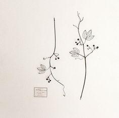 @dicipeu_fleur さんへ置かせて頂く作品のご紹介 . . 【野葡萄】 . . 上も下もない構図 . . だからこそ、お好きな角度で飾って欲しい作品^ ^ . . 前回のイベントですぐにお嫁に行ったものより . . もう少しシンプルに表現しています . . 蔓のくねり感がお気に入りの作品となりました* . . [d'ici peu〜ディシプー〜] . 住所|川越市仙波町1-5-38 .  #wireart #wirework #wirecraft  #wiredrawing #fildefer #fildiferro #autumnleaves #specimen #ワイヤーアート #ワイヤークラフト #ワイヤーワーク #植物標本 #イベント  #秋の実 #autumn #wildgrapes #実もの #handmade #handicraft #野葡萄  #蔓 #お花屋 #川越