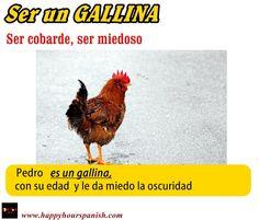 Ser un GALLINA  -  Tener miedo a hacer algo ( be afraid to do something ).