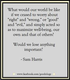 Would we lose anything important.? -Sam Harris  http://goodology.com/positive-quotes-for-the-day/