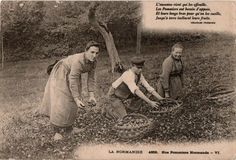 #Normandie #Pommiers #Normands  #SeineMaritime, #1918 http://on.fb.me/1qKLIkE