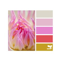 Design Seeds ❤ liked on Polyvore featuring colors, color palettes, design seeds and pictures