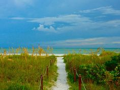 One of our FAVORITE places ...Sanibel Island, Florida