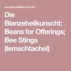 Die Blanzeheilkunscht: Beans for Offerings; Bee Stings (Iemschtachel)