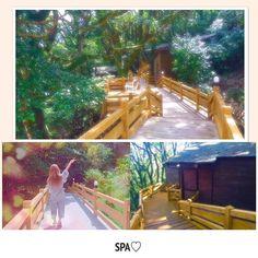 【rukatn】さんのInstagramをピンしています。 《𓇼 この前の休日〜😝💓 ちびりなと貸切露天風呂行ってきた♨️ 部屋に行くまでの道も森林に囲まれてて雰囲気🙆💚🙆💚 #holiday #onsen #hotel #nature #green #forest #trees #spa #bath #hotsprings #relax #beautiful #happy #enjoy #follow #followme #like4like #l4l #instagood  #休日 #ホテル #温泉 #自然 #癒し #景色  #森林 #森林浴 #リラックス》