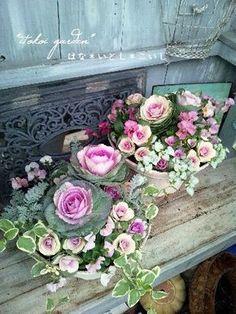 Flowers– among life's little satisfactions Spring Flower Arrangements, Flower Centerpieces, Flower Decorations, Floral Arrangements, Winter Flowers, Green Flowers, Pretty Flowers, Spring Flowers, Container Plants
