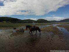 Balade à cheval autour du fjord du Saguenay - Carnet d'escapades