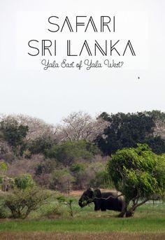 In Sri Lanka kun je heel goed op safari gaan, maar wel park moet je nou kiezen? Hier maak ik een vergelijking voor je tussen Yala East en Yala West.