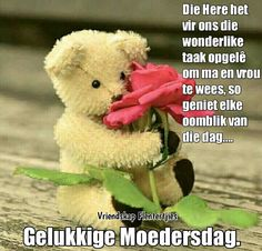 Verses, Teddy Bear, Songs, Quotes, Afrikaans, Cards, Quotations, Scriptures, Teddy Bears