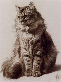 Ferdinand Oger (French, 1872-1929) - Study of a Tabby Cat