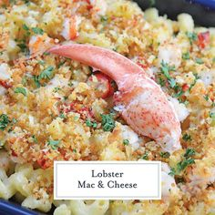 Sweet lobster, creamy cheese & a crunchy panko topping come together to make the BEST Lobster Mac and Cheese recipe! Perfect for any elegant or casual meal! #lobstermacandcheese #easylobstermacandcheese #homemademacandcheese www.savoryexperiments.com Lobster Mac N Cheese Recipe, Bacon Mac And Cheese, Best Mac And Cheese, Mac And Cheese Homemade, Cheese Recipes, Cooking Recipes, Baked Mac, Creamy Cheese, Dinner Recipes