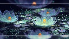 Lotus pond dew by *Fiery-Fire on deviantART