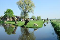 Fietsroutes en wandelroutes - Groene Hart ~ Fietsenwandelweb.nl