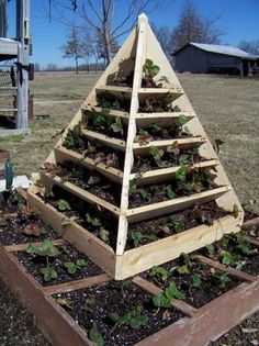 Square Foot Garden...greenesgardenthings.com