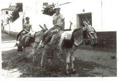 José Hernández con su burro en su trabajo diario por el Albaicín. 29 de julio de 1982 / JULIO PEDREGOSA/ARCHIVO DE IDEAL Granada, Light And Shadow, Horses, Lights, Antiques, Animals, War, Vintage Postcards, Antique Photos