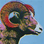 http://www.wikiart.org/en/andy-warhol/bighorn-ram-endangered-species-1983