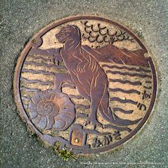 Japanese Manhole Cover - There is beauty everywhere in Japan. U C the details everywhere when walking the streets.
