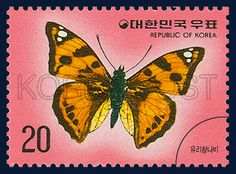 Postage Stamps of Butterfly Series, Butterfly window, Insect, Red, Orange, black, 1976 01 20, 나비 시리즈(제1집), 1976년01월 20일, 996, 유리창 나비, postage 우표