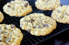 Giant Chewy Oatmeal Chocolate Chip Cookies - Great Harvest copycat recipe, made with whole wheat flour!