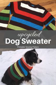 Keep your pooch warm with style in an upcycled dog sweater. This is an easy sewing project that you can make in no time at all. Dog Clothes Patterns, Sewing Patterns, Coat Patterns, Large Dog Sweaters, Old Sweater, Dog Sweater Pattern, Dog Coat Pattern Sewing, Dog Jumpers, Dog Jacket