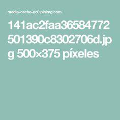 141ac2faa36584772501390c8302706d.jpg 500×375 píxeles