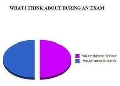 What I think about during an exam on We Heart It Exams Memes, Final Exams, Satire, Funny Pictures, Funny Pics, Funny Stuff, Fails, We Heart It, Humor