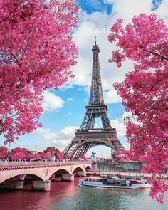 Tour Eiffel, Torre Eiffel Paris, Paris Eiffel Tower, Eiffel Towers, Paris In Spring, Springtime In Paris, Eiffel Tower Photography, Paris Photography, Nature Photography