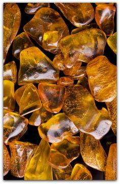 Polish Amber