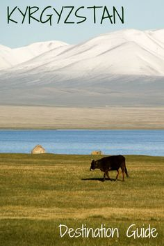 Kyrgyzstan - the complete destination Guide: map, videos, detailed destination posts, planning and packing tips...