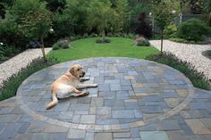 New England - Pavestone - Natural Paving Stone for gardens and driveways...possible patio