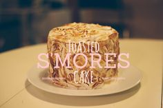 Toasted S'mores Cake!!! Fun and delicious