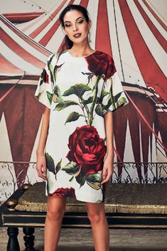 ece16a572984 THE SHOW ROSE ON Tunic Dress - Trelise Cooper-New In   Trelise Cooper Online