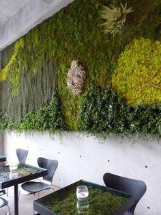 ニコライバーグマン・カフェの壁