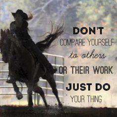 Visit us at http://www.springcreekfeed.net/ for all your horse supply needs from feed, to blankets, to tack. We have it all! http://x.vu/barrierqueenreviews